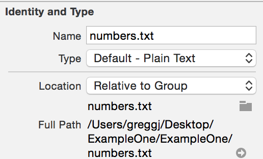 First Program in Xcode